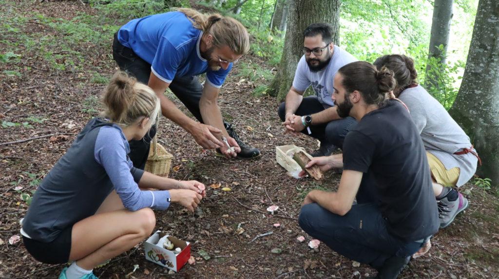 Pilzkunde am Waldsysmposium 2019